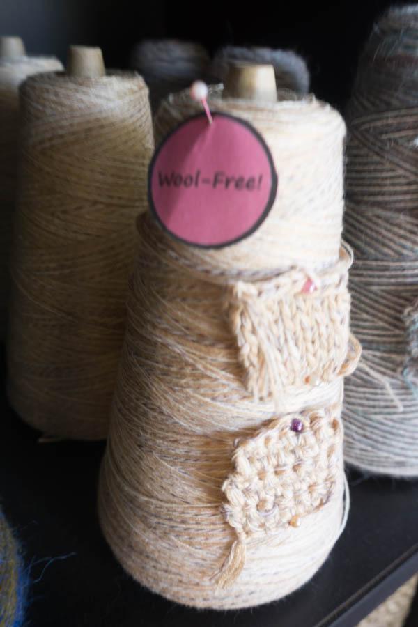 Wool free blog-3